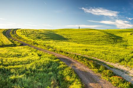 landscape road: Tuscany at spring