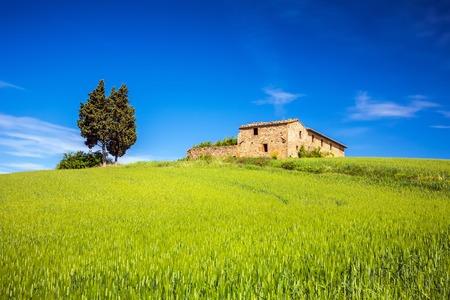 tuscan house: Tuscany at spring