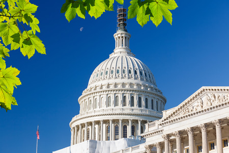 us capitol: US Capitol Stock Photo