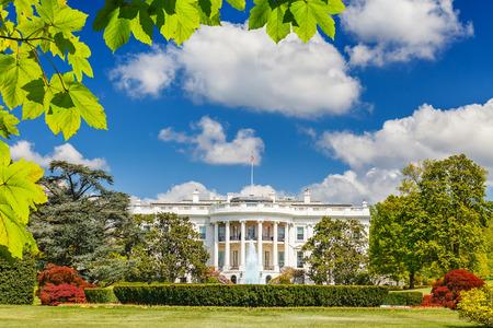 bandera blanca: La Casa Blanca  Editorial