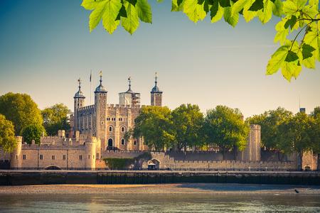 런던 타워 스톡 콘텐츠