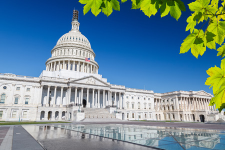 the capitol: US Capitol Stock Photo