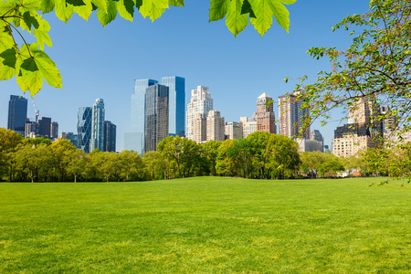 urban landscapes: Central park, New York