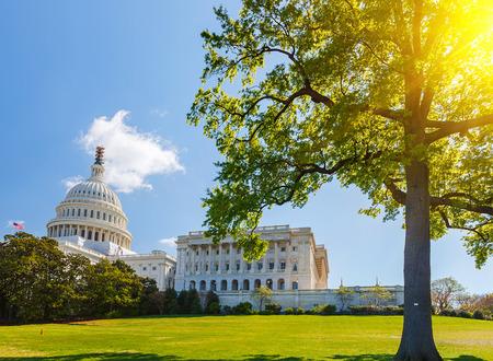dia soleado: Capitolio de Estados Unidos en el día soleado