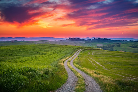tuscany: Beautiful Tuscany landscape at sunset, Italy