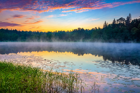 Foggy sunrise over forest lake