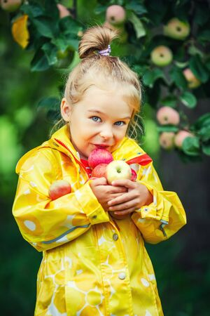 young tree: Little girl holding apples in the garden