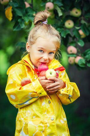 fruit orange: Niña que sostiene la manzana en el jardín Foto de archivo