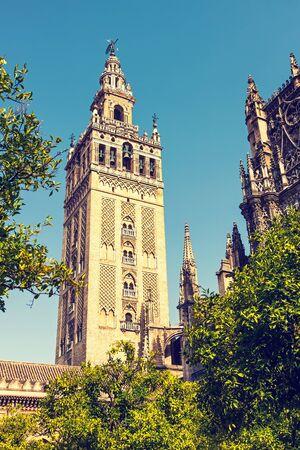 sevilla: La Giralda in Sevilla, Spain