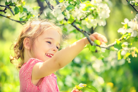 albero di mele: Bambina felice che gioca nella primavera del melo giardino Archivio Fotografico