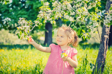 green apple: Happy little girl playing in spring apple tree garden