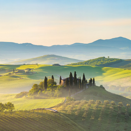 tuscany: Beautiful foggy landscape in Tuscany, Italy