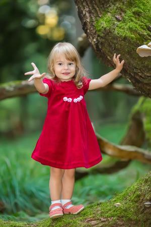 mignonne petite fille: Petite fille dans la forêt verte sauvage