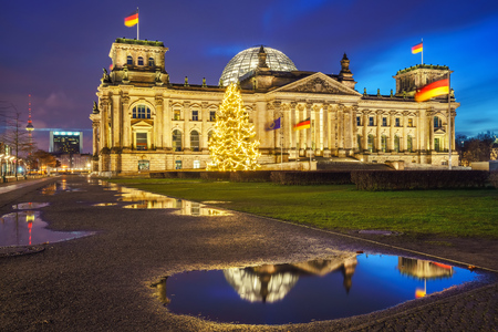 congress center: Reichstag christmas tree at night, Berlin, Germany