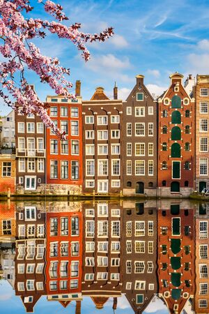 flor de cerezo: Traditional old buildings in Amsterdam spring, the Netherlands