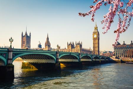 春、ロンドンでビッグ ベン、ウェストミン スター ブリッジ