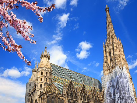 stephansplatz: St. Stephan cathedral in Vienna at summertime Stock Photo