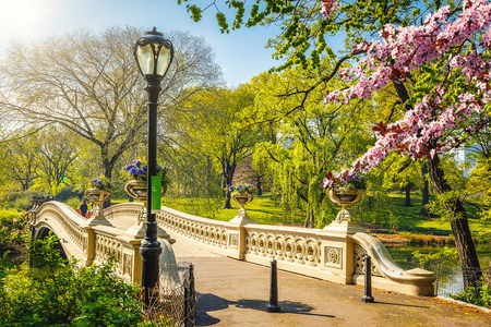 Boog brug in Central Park op lente zonnige dag, New York City