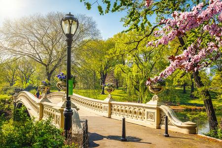 Bow bridge in Central park at spring sunny day, New York City Foto de archivo