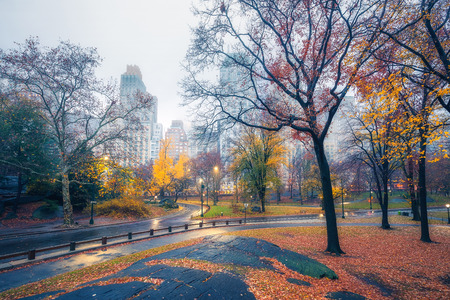 Central Park au matin pluvieux, New York City, États-Unis