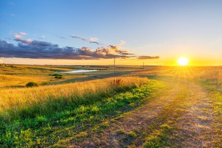 Rural landscape with ground road and wheat field in a countryside at summer sunset