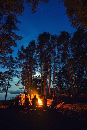 Amis en forêt près d'un feu de joie avec guitare. Un groupe de personnes sous le ciel nocturne avec des étoiles profite de vacances au camping. Banque d'images