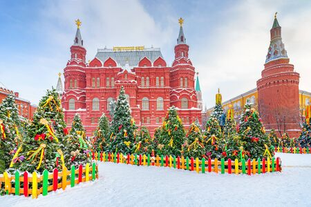 Christmas trees near kremlin in Moscow at winter snowy day, Russia