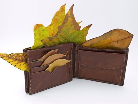 pocketbook: Metaphor about man without job after economy crises and his wallet in the fall.