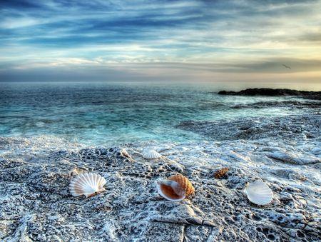 paisaje mediterraneo: Vista de la playa virgen en alg�n lugar de la costa adri�tica.
