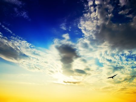 View of the sky and the silhouette of a seagull over the Adriatic Sea. Stock Photo - 5521385