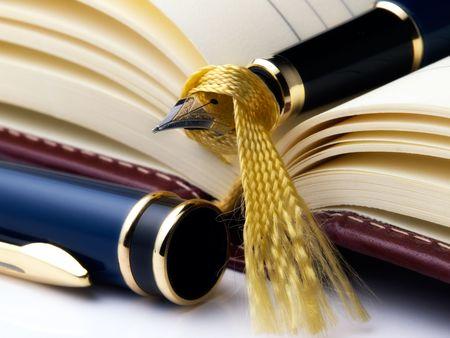 organizer: Open diary and fountain pen on it. Stock Photo