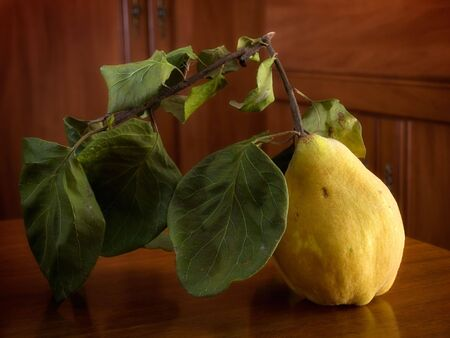 Yellow ripe quince on a wooden table somewhere in the countryside Stock Photo - 5920115
