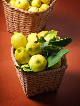 Baskets full of lemons after harvest. Stock Photo - 6129603