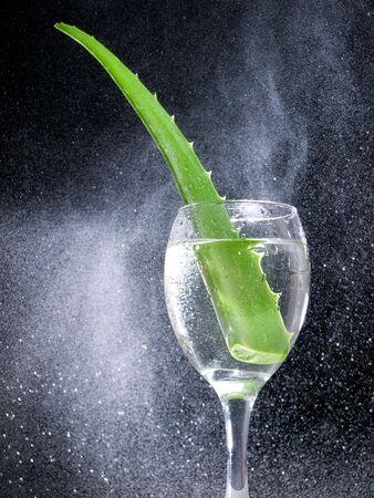 plant antioxidants: Leaf of Aloe Vera cactus in a glass surrounded by a multitude of droplets
