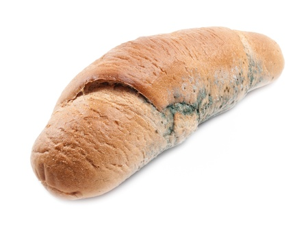 mouldy: Moldy loaf of bread on a white background  Stock Photo