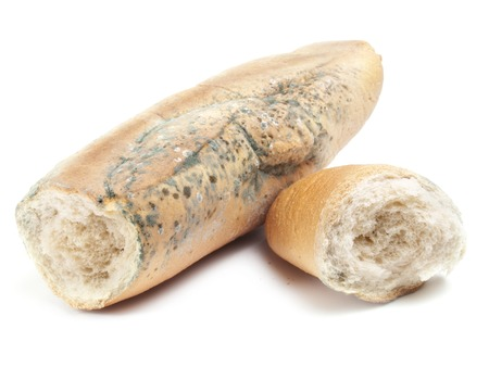 desechos toxicos: Dos partes de un antiguo pan de molde sobre un fondo blanco. Foto de archivo