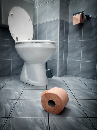 papel de baño: Una mirada más cercana en el papel higiénico en el suelo y el inodoro en el fondo
