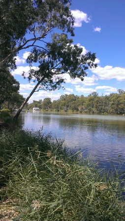 River Boat on Murray, Wentworth Stockfoto