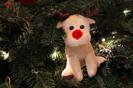 Red Nosed Reindeer Christmas Tree Decoration