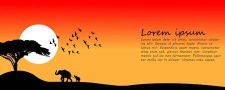 At sunset, elephants, birds walk in the landscape.