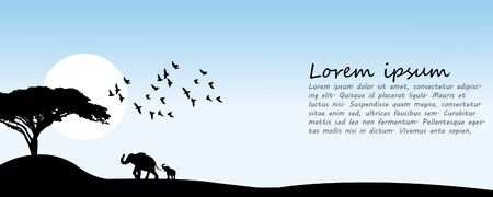 Daytime, elephants, birds walk in the landscape. Banner vector. Sunrise.