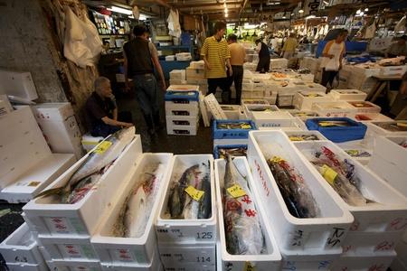 TOKYO - 4 juli: Vis en zeevruchten te zien op de Tsukiji Wholesale zeevruchten en vis markt in Tokyo Japan op 4 juli 2011. Tsukiji Market is de grootste groothandel vis en zeevruchten markt in de wereld