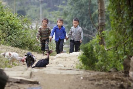 SAPA, VIETNAM - NOV 21: Unidentified Vietnamese children walking in hills of Sapa, Vietnam on November 21, 2010.