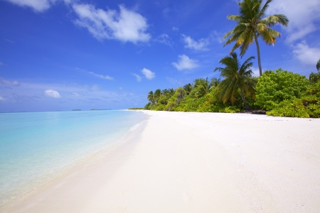 Landscape of tropical island beach photo
