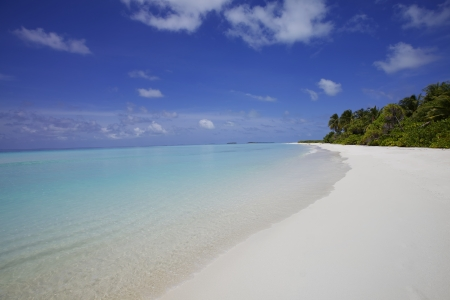 Tropical island beach white sand blue ocean