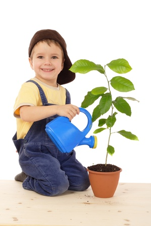 Smiling little boy watering the plant, isolated on white Stock Photo - 9429651