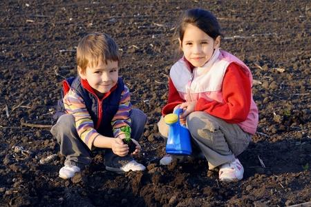 seeding: Little children on field seeding the plant