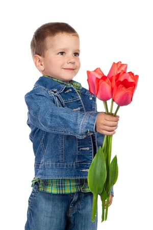 Little boy stretching forward red tulips