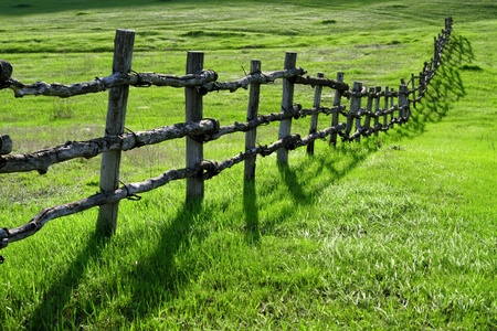 pasture fence: Old wooden fence on green meadow