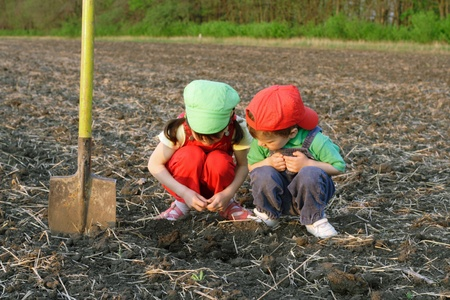 plowed field: Little children with shovel on field looking to ground